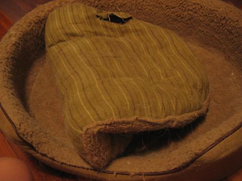 Moxie's Old Bed