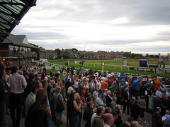 Horses making way to start line at Musselburgh Racecourse