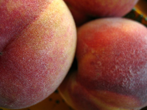 peaches close-up
