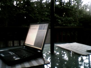 Blogging outside.
