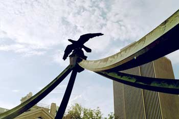 SLC eagle