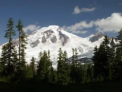 Mt Baker From Meadow