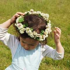 may16/2012 / White clover flowers crown photo by Junring