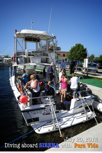 Diving West Palm Beach
