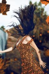 """Autumn Fall"" photo by Kavan The Kid"