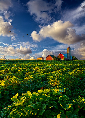 Living Wisconsin photo by Phil~Koch