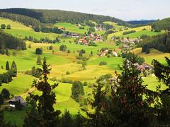 Landscape like a Picture Book photo by Batikart