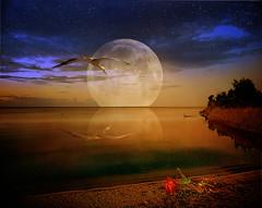 The broken spell photo by pinktigger
