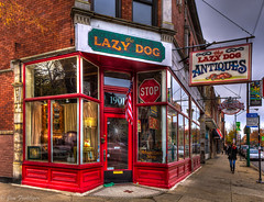 The Lazy Dog photo by woobear