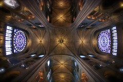 Notre Dame de Paris photo by Bernardo © (http://PhotographingAround.Me)