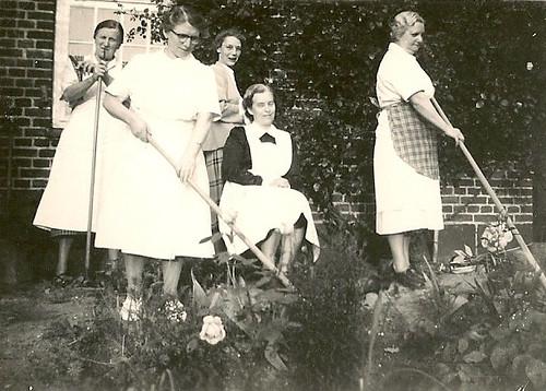 Sommeren 1954