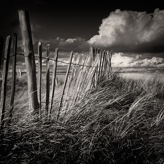 Dunes fence photo by Alan Frost LRPS