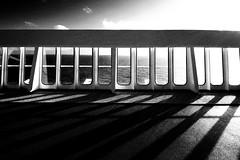 Carnival Ecstasy - Shadows photo by . Jianwei .