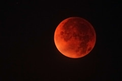 Red Moon at Morning photo by mcmillend