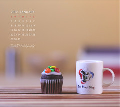 January Calendar photo by Faisal | Photography
