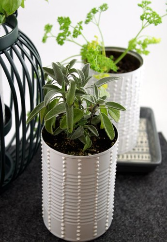 Can Herb Garden