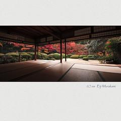 詩仙堂 紅葉 photo by Eiji Murakami