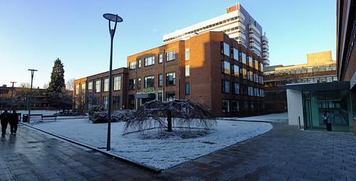 Snowy Library.jpg