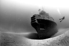 The Tugboat Rozi photo by matfar