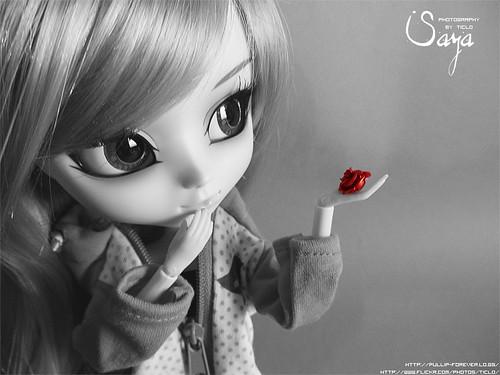 Poisoned Rose ~