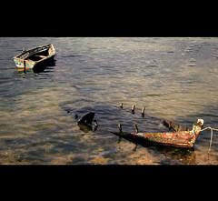 boats (e x p l o r e) photo by RL Mulholland