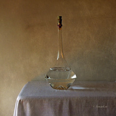 Still Life & Vintage Glass photo by MargoLuc