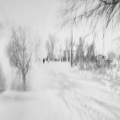 impressioni d'inverno photo by Lorena Gazzotti