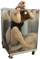 Dayle Krall's Full View Water Cell Escape photo by Dayle Krall:Most Accomplished Female Escape Artist