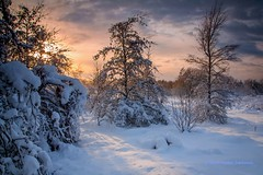 Winter photo by B.AA.S.