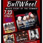 Bullwheel