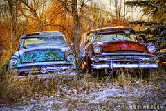 Brothers All Are We photo by James Neeley