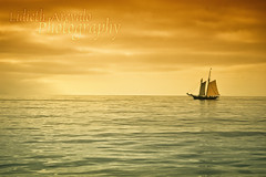 Pirates of the Catalina Island photo by Lidieth Arevalo Photography
