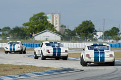 Sebring 2011 - Legends of Motorsports - Shelby GT350s photo by Old Boone