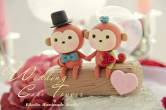 Wedding Cake Topper-love monkey photo by charles fukuyama