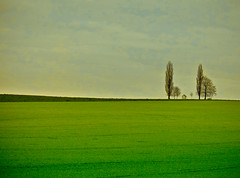 in Belgien - near the highway photo by NPPhotographie