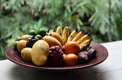 Fruit Platter photo by Matthew Kenwrick