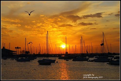 12/10/2011 Sunset from Davis Island,Tampa,Fl.(explored)