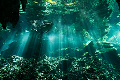 Gran Cenote photo by Seth Patterson
