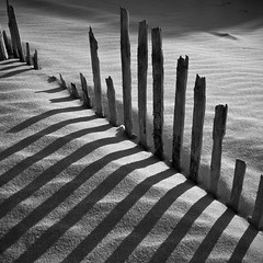 Fences #1 photo by AlpixImages