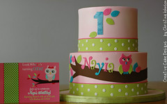 Girly Owl Cake photo by Christina's Dessertery