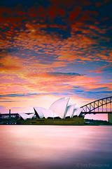 Sydney Opera House at Sunset photo by -yury-