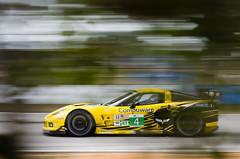 Sebring 2012 - ALMS / WEC Winter Test - Corvette Racing Chevrolet Corvette C6.R GTE photo by Old Boone