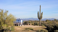 Campsite at McDowell Mountain Regional Park