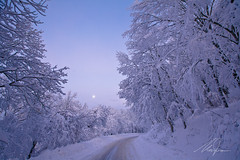 Dì, neve photo by Maurizio M.