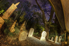 Magic Kingdom: The Haunted Mansion photo by Hamilton!