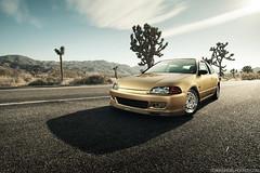 Jorge Hernandez's Gold EG Hatch for Super Street photo by Sean Klingelhoefer