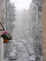 Roma - Ora nevica! Snowing! photo by byus71