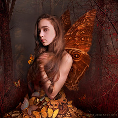 Abigail with Butterflies photo by irene liebler