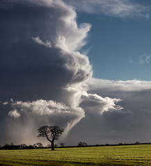 Winter Storm.... 20/20! photo by Martyn Fordham LRPS