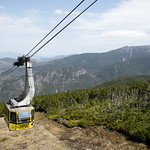 Take a Tram Ride This Weekend! 5.26.16